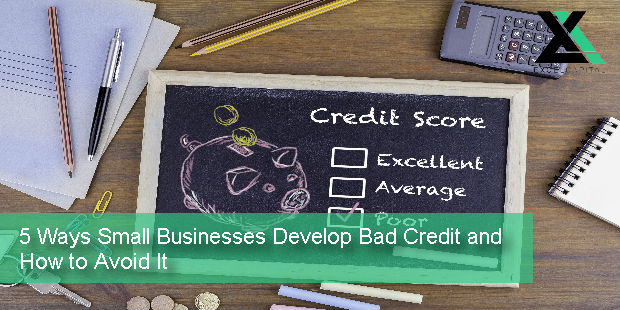 5 Ways Small Businesses Develop Bad Credit and How to Avoid It | Excel Capital Management