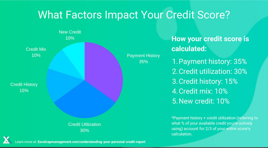 EXCELCAPITAL - UNDERSTANDING YOUR PERSONAL CREDIT REPORT