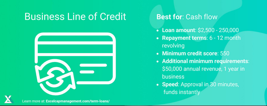 EXCEL CAPITAL - BUSINESS LINE OF CREDIT