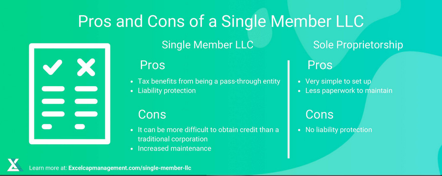EXCEL - SINGLE MEMBER LLC