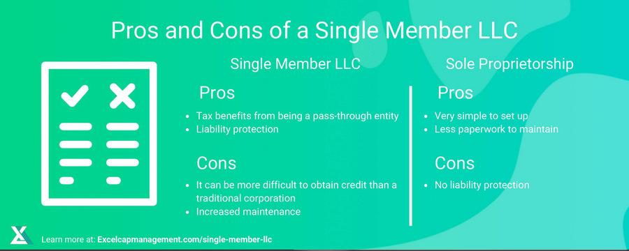 EXCEL - SINGLE MEMBER LLC