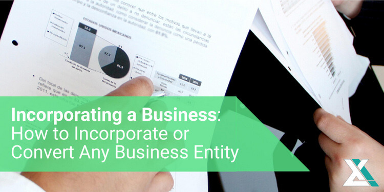 The Complete Guide to Incorporating a Business: How to Incorporate or Convert Any Business Entity